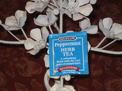 Bigelow Peppermint Herb Tea – Fast Forward to the Aftertaste