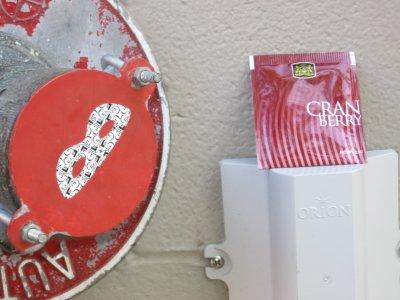 Ceylon Teas Cranberry