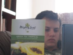 Mighty Leaf Green Tea Tropical – Show Your Taste Buds A Good Time