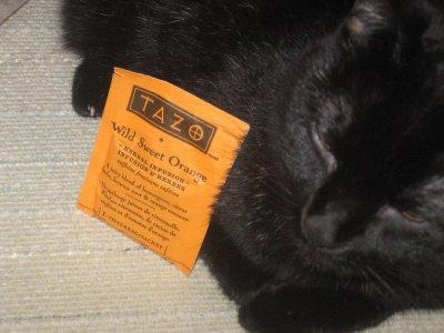 Tazo Wild Sweet Orange Tea – More Color Than Crayola