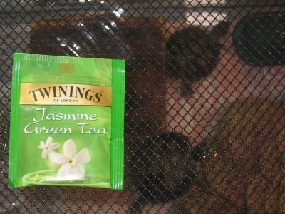 Twining's Jasmine Green Tea – Ain't Nothing But A Sweet Thang Baaaby